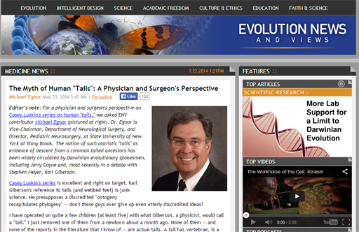 Dr. Michael Egnor on creationism website
